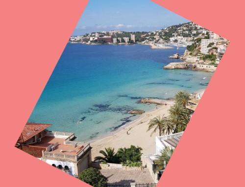 Mallorca ganz unter sich