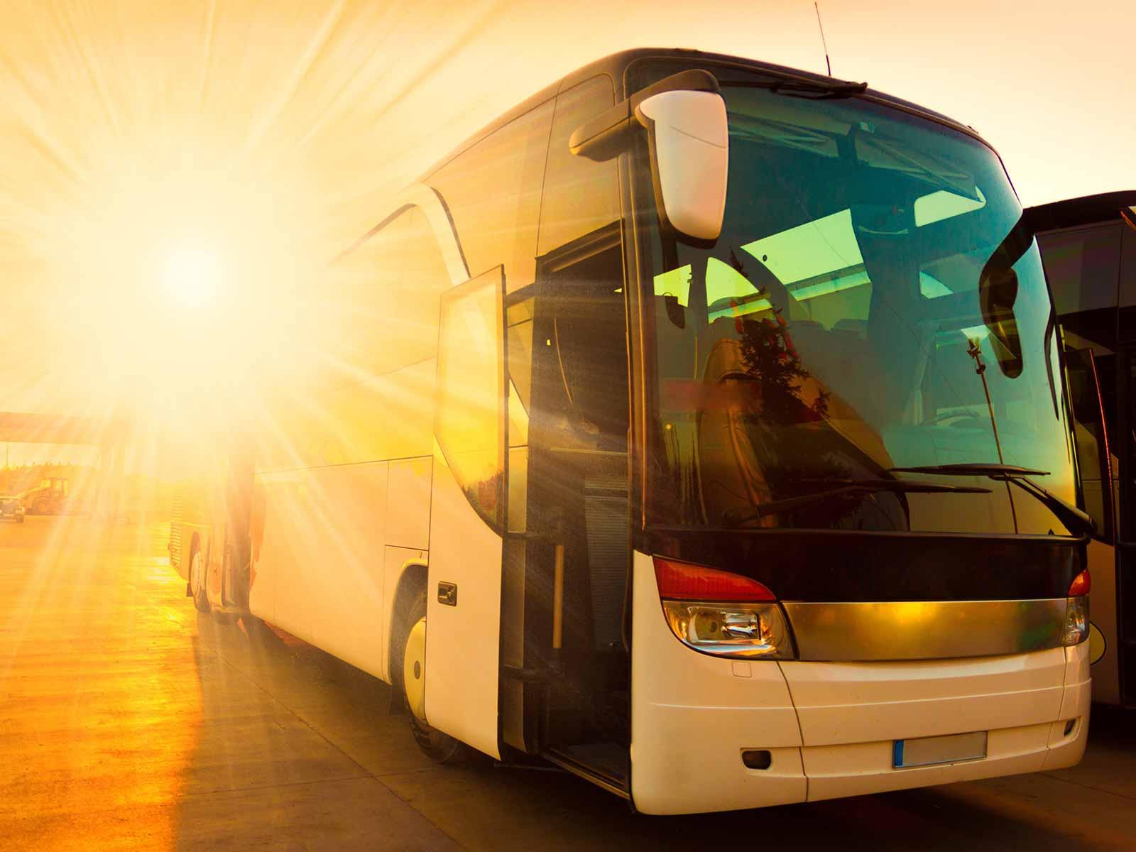 Mallorca-Transfer-Shuttle-Mallorca-5